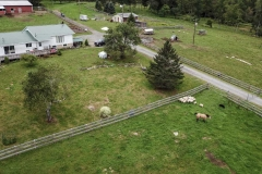 Beaver Lake Farm