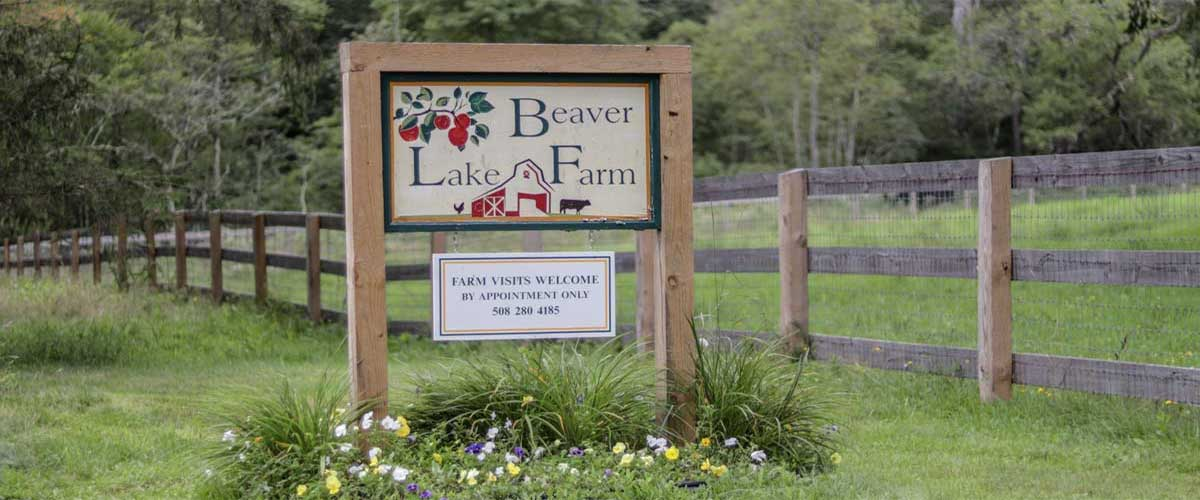 Welcome to Beaver Lake Farm!